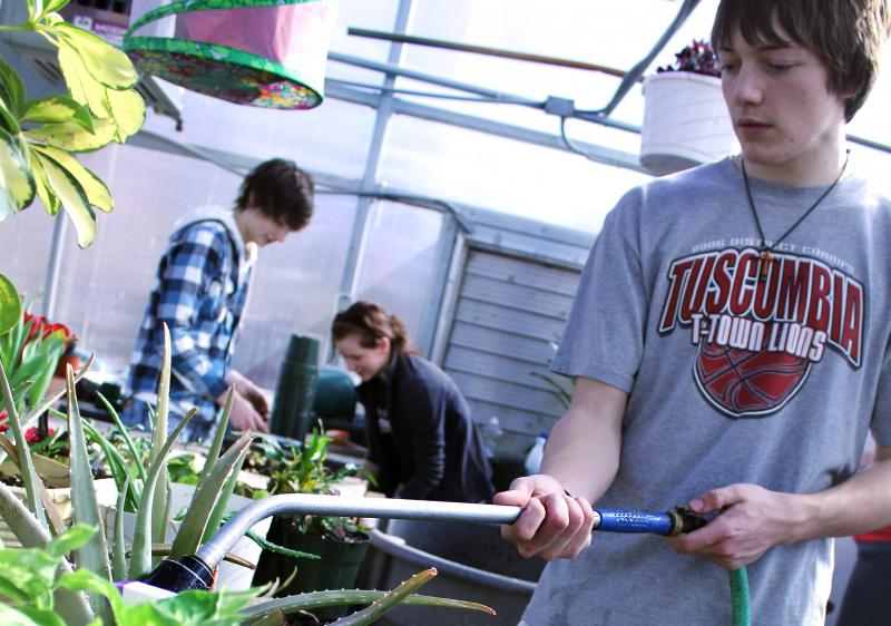 Dylan Lyle, a junior at Tuscumbia High School, waters rows of hanging and potted plants.