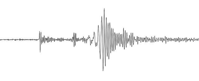 Earthquake seismogram