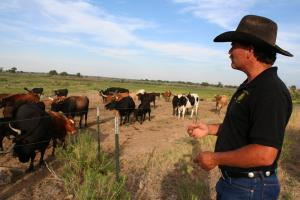 Dan Henrichs, a cattle rancher on the High Line Canal in Avondale, Colo., is also the local ditch superintendent. Most irrigation canals near his ranch have run dry