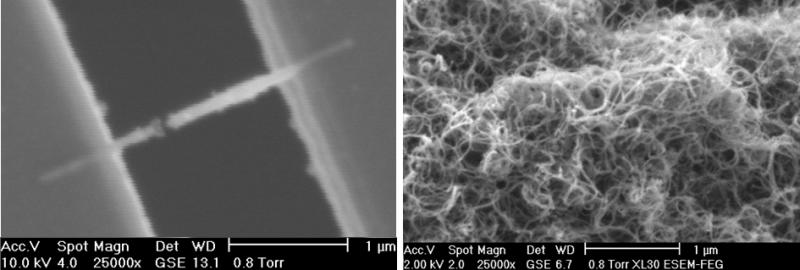 An environmental scanning microscopy shows an electron beam deposited nanowire between two microelectrodes (left) and a multiwall carbon nanotube sample.