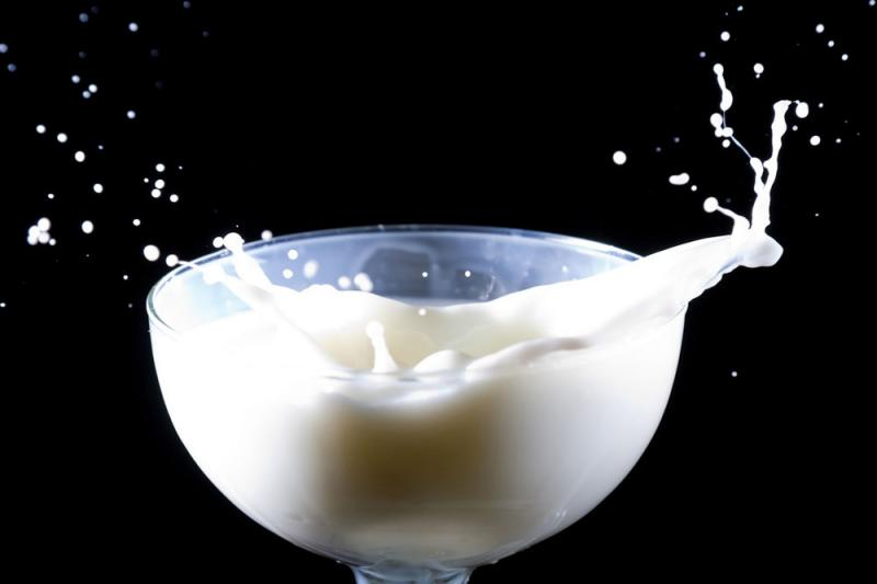 Fractionated dairy ingredients are derived from milk and cheese.