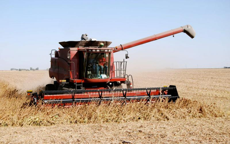 My dad, Mike Swanson, gets his first combine ride from our cousin, Darwin Swanson, during soybean harvest.