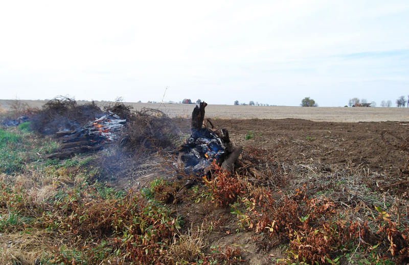 This piece of land in Malta Bend, Mo., went for $11,300 an acre at auction last June. The current owners are burning down fence lines so they can plant crops up to the very edge of the property.