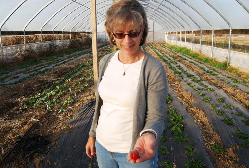 Tammy Sellmeyer in one of the hoop houses of her Fulton, Mo. farm.