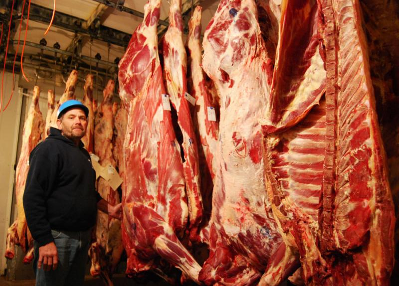 At Swiss Meat and Sausage Co., production manager Glenn Brandt steps into a 34-degree Fahrenheit cooler where 700-pound cow carcasses hang from meat hooks to dry.