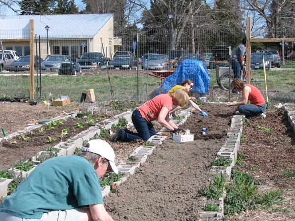 Volunteers work in one of Columbia's interfaith community gardens.