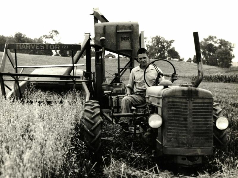 A young Bob Hawthorn runs the harvester through a field of oats. Hawthorn studied engineering and began a career working in the aerospace industry before returning to the farm.