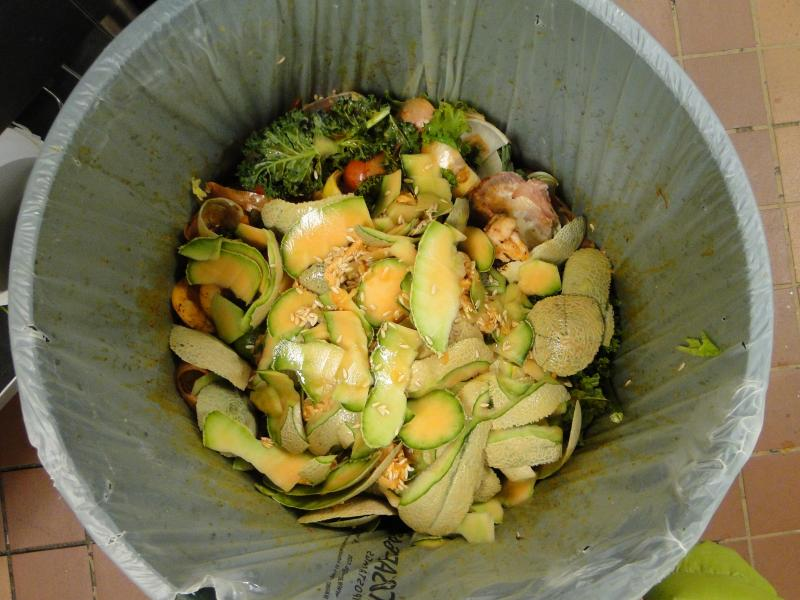 This trashcan full of food waste at the Plaza 900 dining hall was sent to Bradford Research Farm to be turned into compost.