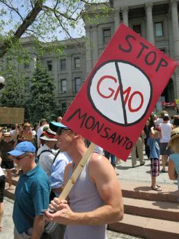 GMO protestor