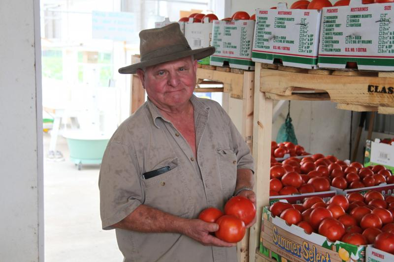 Vegetable farmer Tom Goeke of St. Charles, Mo., sells his Red Deuce tomatoes wholesale at about $1.50 per pound.