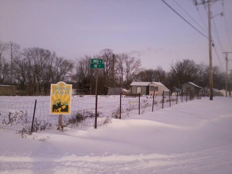 A well-prepared urban farm at-rest last winter.