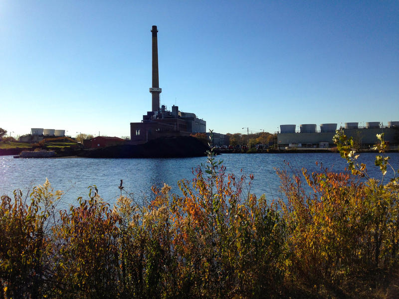 The ash pond at the Columbia Municipal Power Plant, called More's Lake.