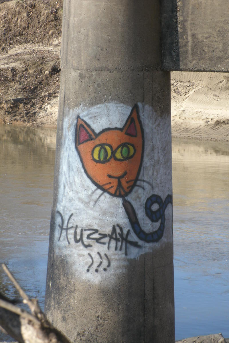 Graffiti on a bridge support over the Chariton River where it flows through the Adair County City of Novinger.