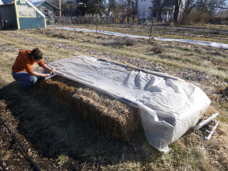 A cold frame can be built from straw bales and plastic sheeting. Lettuce and carrot seeds planted in the warmer soil of the cold frame can mean earlier harvests.