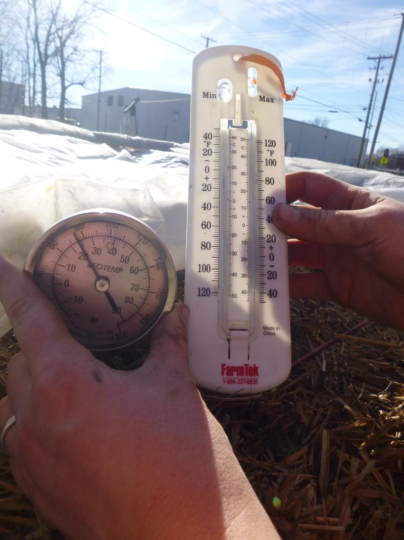 The soil temperature climbs under the plastic sheeting that covers Carrie Hargrove's cold frame.