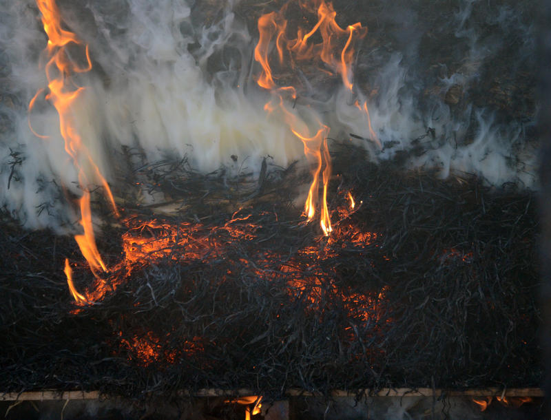 A switchgrass bale burns on March 17, 2015 in the Bradford Research Center's furnace in Boone County, Mo. Superintendent Tim Reinbott hopes to experiment with a burning a mixture of grasses next winter.