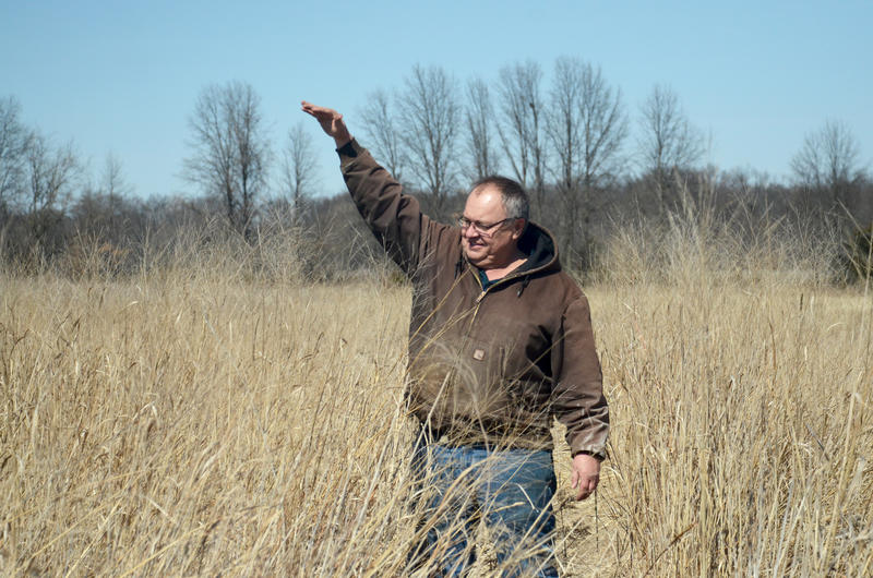 Tim Reinbott, superintendent of the Bradford Research Center in Boone County, Mo., demonstrates how tall switchgrass can grow on March 17, 2015. Typical switchgrass grows to be 3 to 5 feet at harvest.