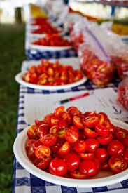 Tomatoes await their tasters at a recent Bradford Farm Tomatofest.