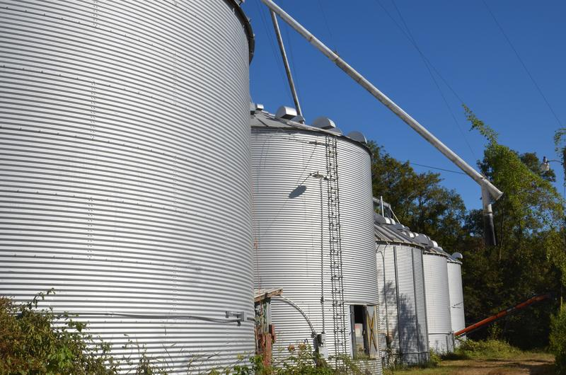 Grain bins on John Sam Willliamson's farm wait to be filled with soybeans on Thursday, Oct. 1, 2015. Williamson has climbed all over the grain bins on his farm in Columbia, Missouri and has never had an accident, but knows two people who have died.