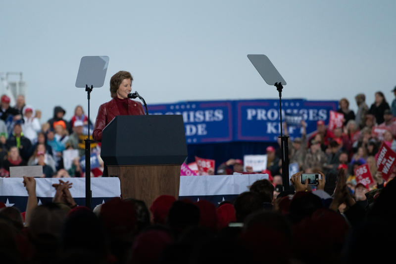 Hartzler speaks at a Trump rally on Nov. 1, 2018.