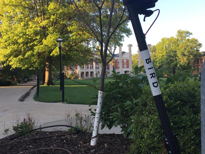 """A Bird scooter sits outside of the Missouri School of Journalism. The company Bird Rides has been dropping the scooters in college towns across the U.S. as part of its """"University Pop-Up Tour."""""""