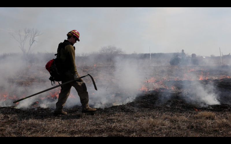 A fire burns over Tucker Prairie April 2, 2013. Various tracts are designated to be burned over a period of years in order to enrich the soil, speed up the decay process and prevent woody shrubs from taking over.