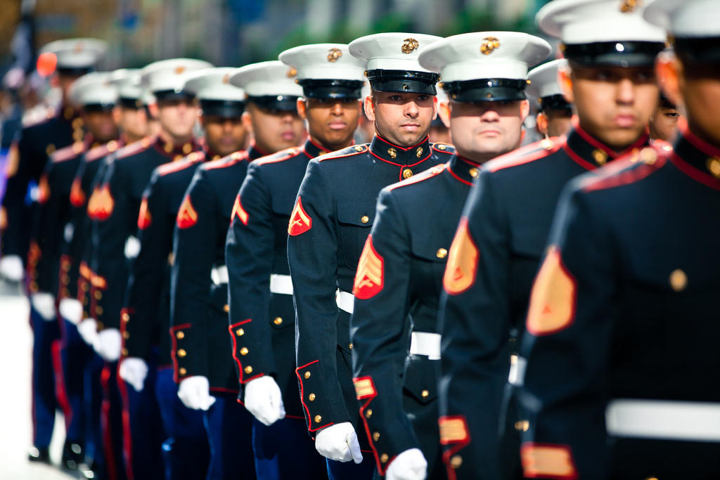 department of veterans affairs plans to expand mental health