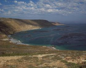 A portion of San Miguel Island - not necessarily the location where the body was discovered.