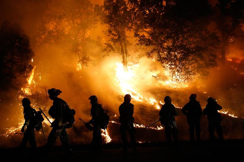 Sierra wildfires are a growing threat due to proliferation of dead trees
