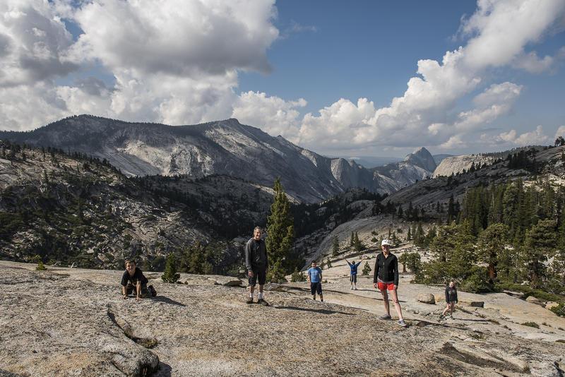 Yosemite Olmsted