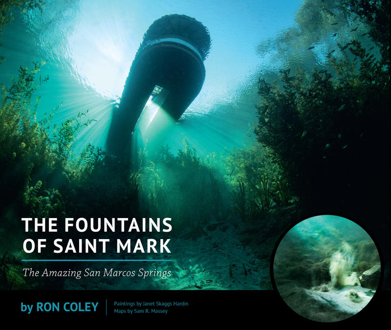 The Fountains of Saint Mark book cover
