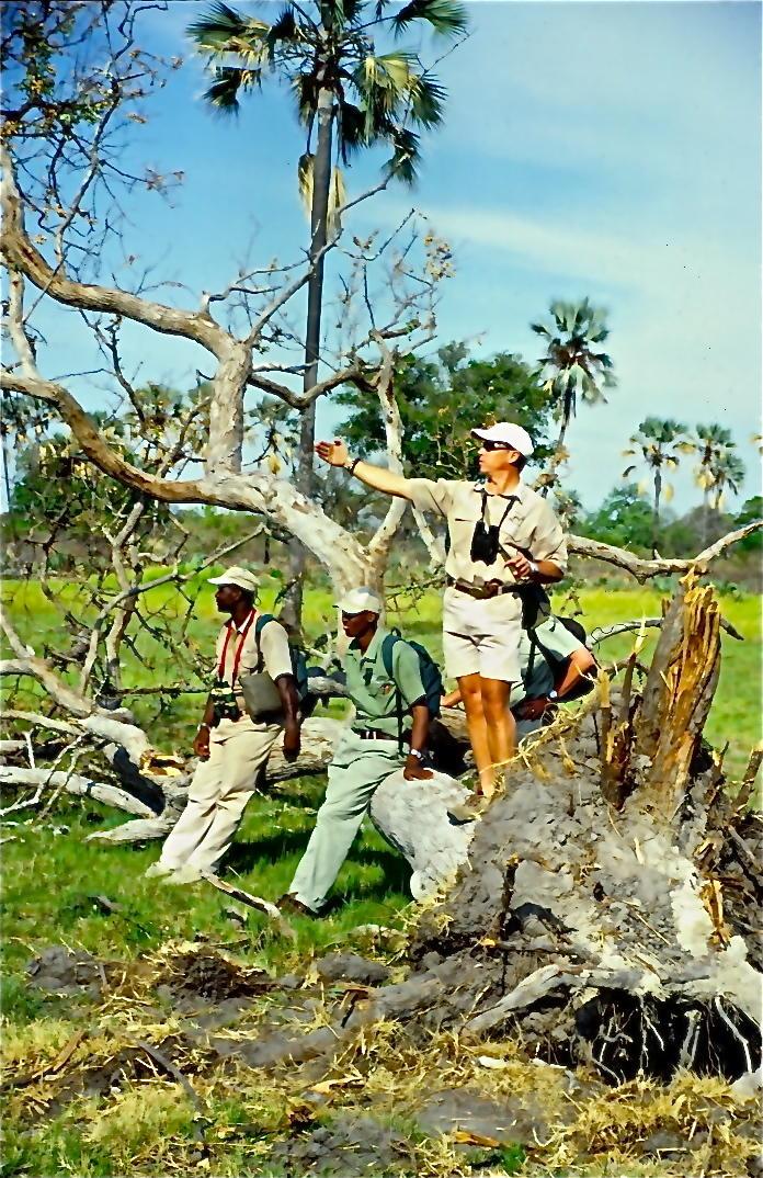 Botswanan game trackers
