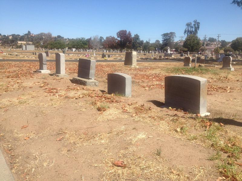 Since the Arroyo Grande Cemetery District stopped watering the Arroyo Grande Cemetery in 2015, the site has been infested with gophers and no longer has lush, green grass.