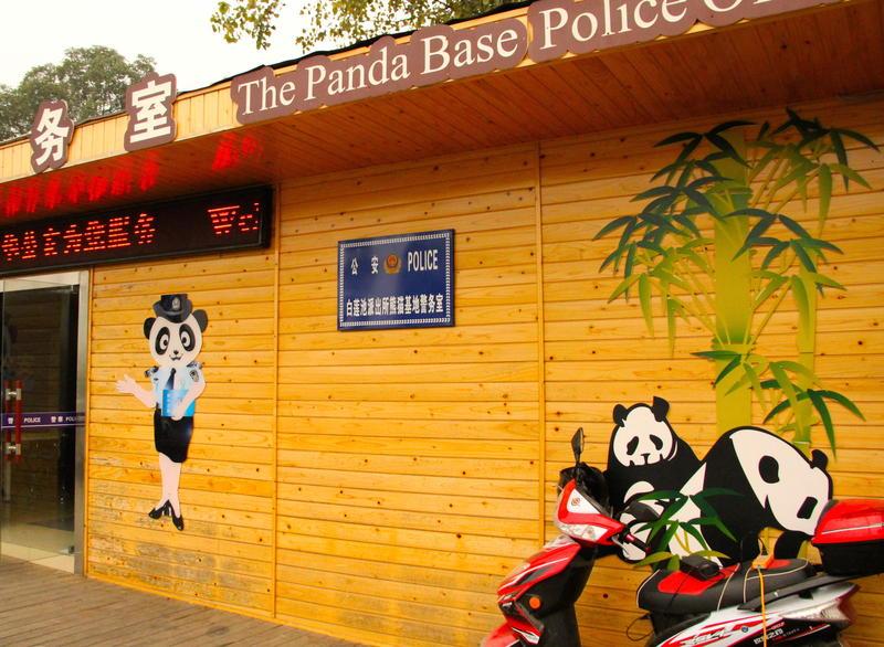 Giant Panda Research Base Panda Police station