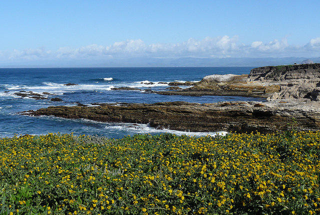 A pacific view from the Bluff Trail at Montano de Oro.