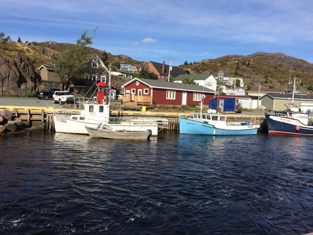 Small fishing boats in Petty Harbour