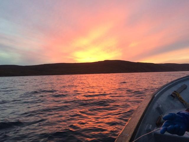 Beautiful sunset over The Harvey, a Traditional fishing ground just off the coast of Petty Harbour. In the corner you can see Kimberely Orren using a traditional handling.