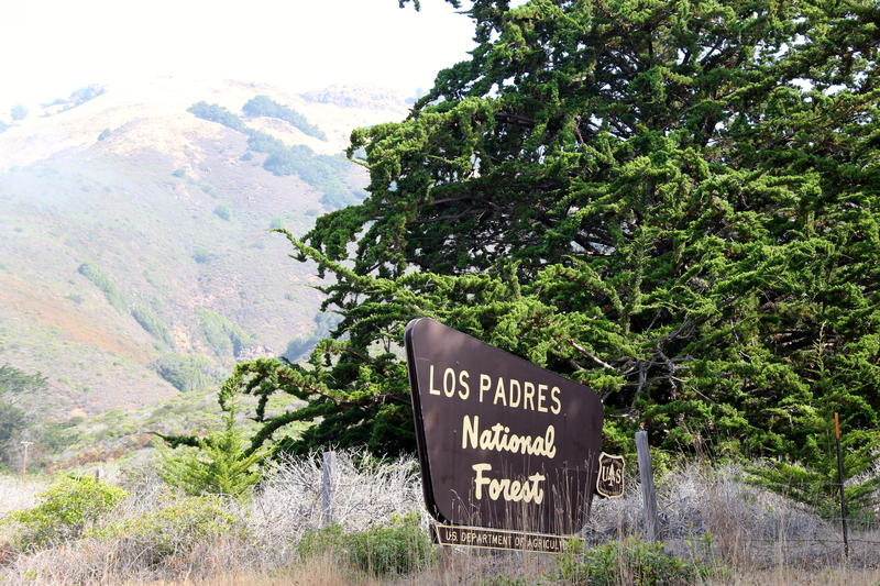 Los Padres National Forest encompasses lots of Big Sur country