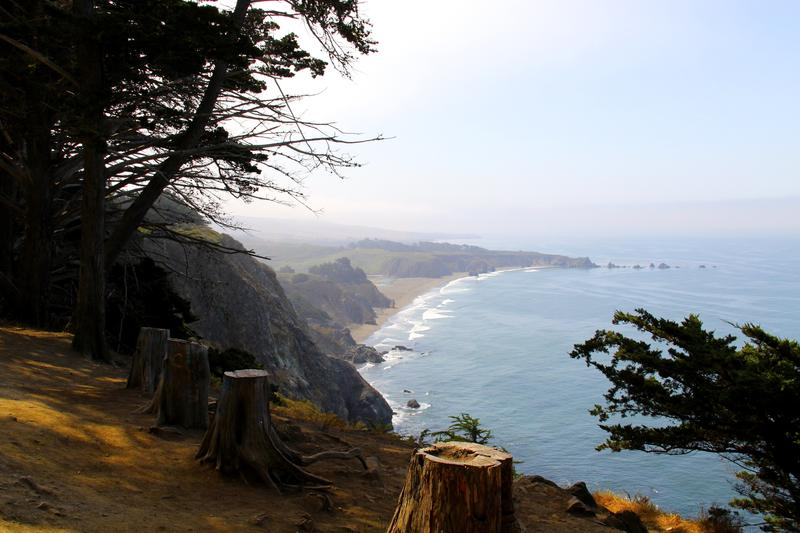 The realm of Big Sur abruptly thrusts up from gentle marine terraces at both the Southern and Northern gateways