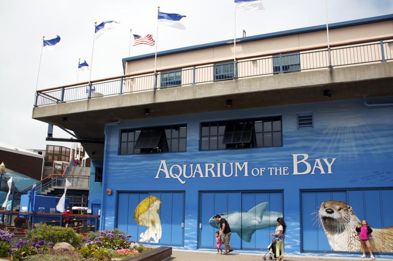 FIsherman's Wharf district's Aquarium of the Bay at Pier 39