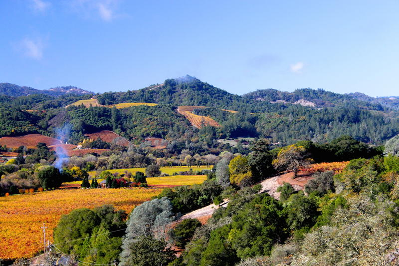 The vistas of dry Creek Valley from Trattori Farms tasting room is worth the visit all on its own