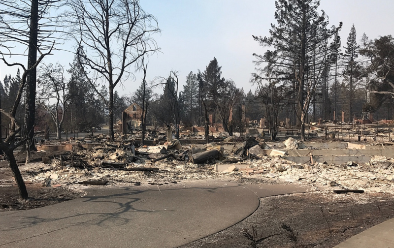A residential area of Santa Rosa burned in the Tubbs Fire.