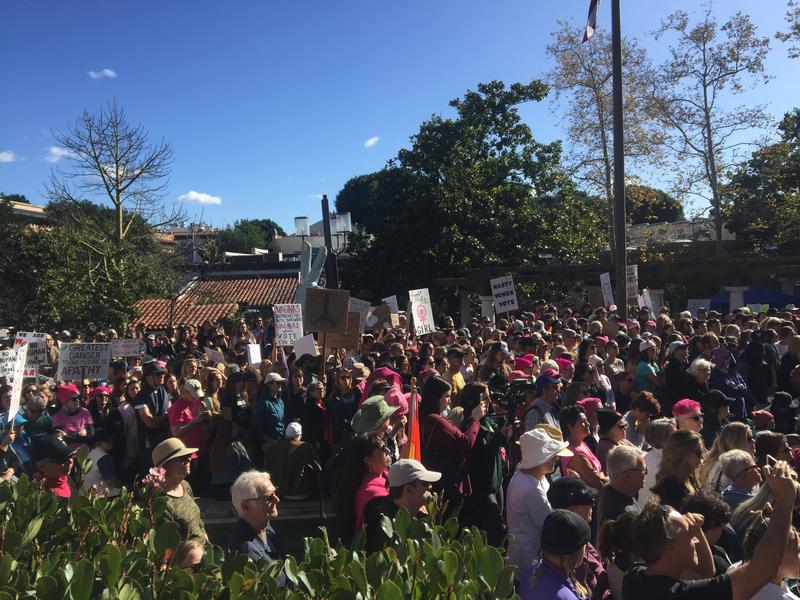 The crowd at the 2018 SLO Women's March rally.