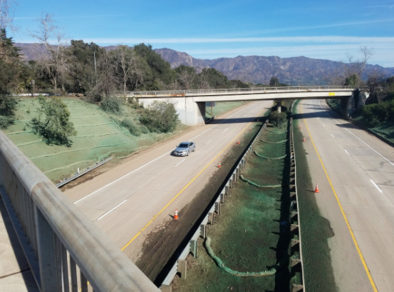 Caltrans tweeted this picture of Highway 101 on Sunday, annoucing the highway is reopened as of noon.