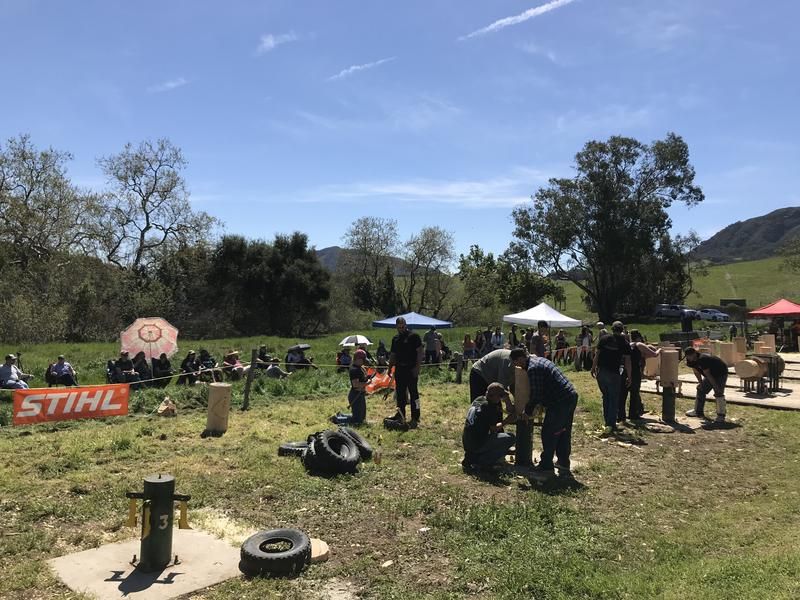 Teams set up for a wood chopping event.