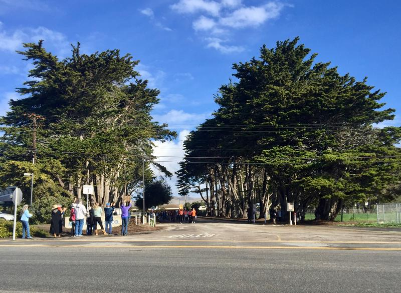 A handful of local adults turned out to support Morro Bay HS students during the walkout event.