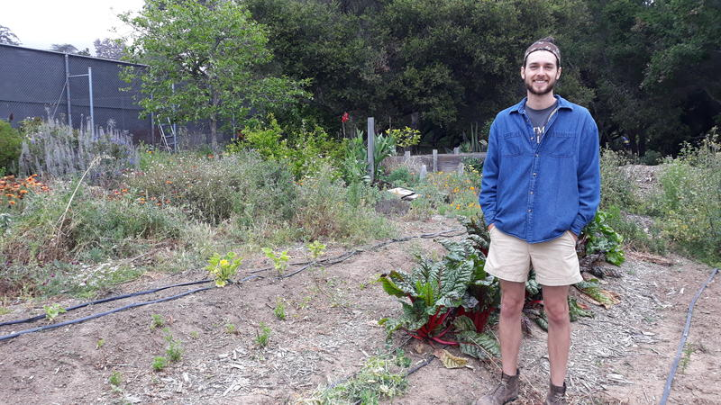 Kenny is the head gardener for the kitchen gardens at Westmont College in Santa Barbara.