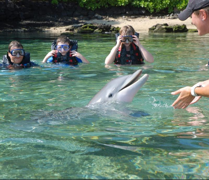 Memories are made at Dolphin Quest Hawaii.