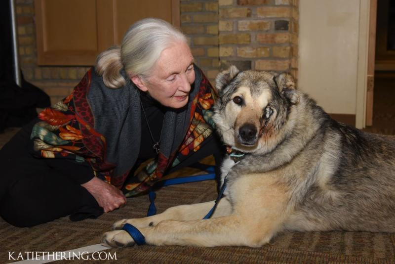 Dr. Jane Goodall visits with Home For Life's rescue dog Raha.