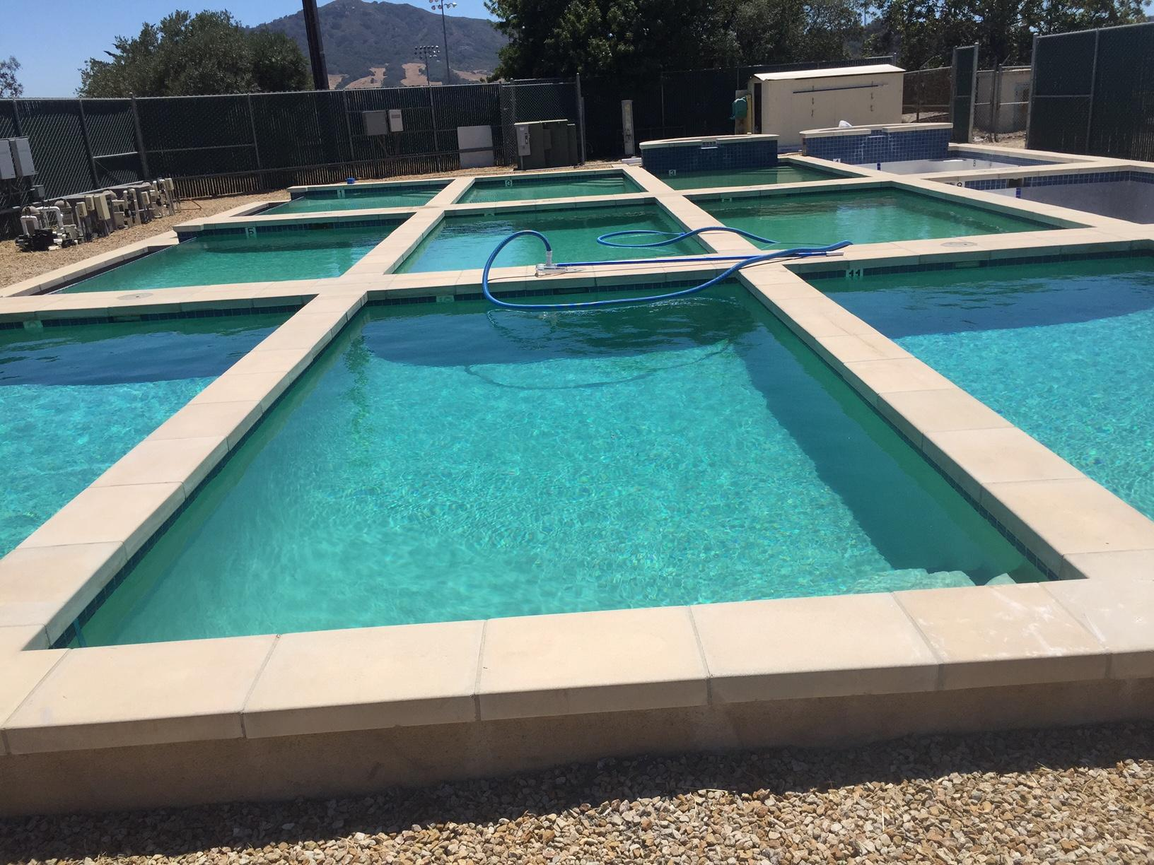 Study results show pool owners could save water with the for Show pool result